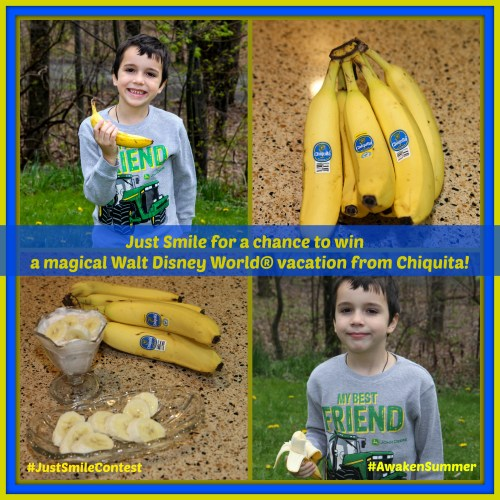 Chiquita Banana Collage