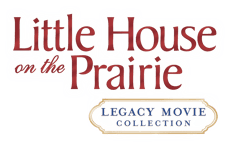 Little house logo