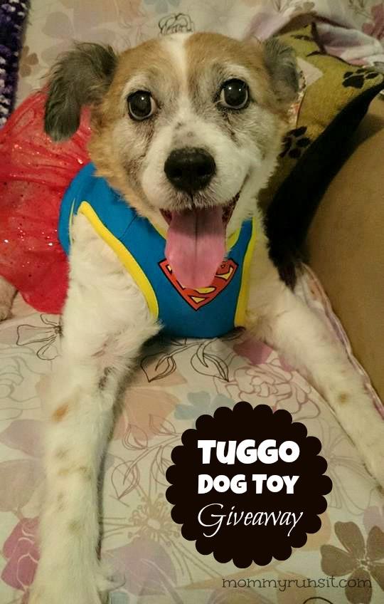Tuggo Dog Toy Giveaway   Mommy Runs It   #2014HGG