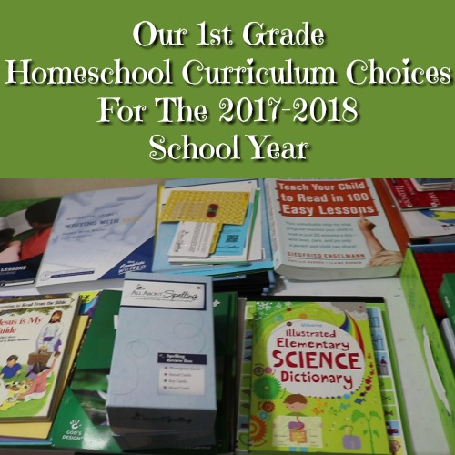 Our 1st Grade Homeschool Curriculum Choices For The 2017-2018 School Year