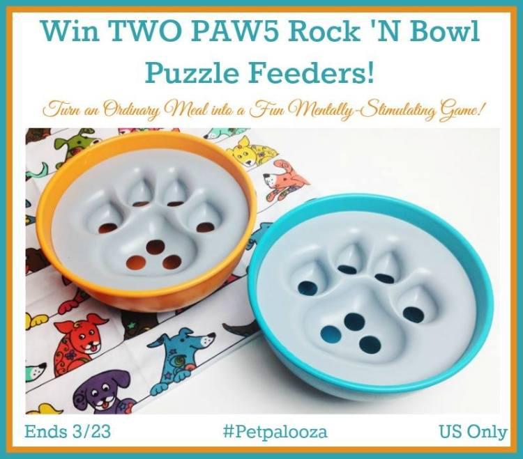 PAW5 Puzzle Dog Bowls