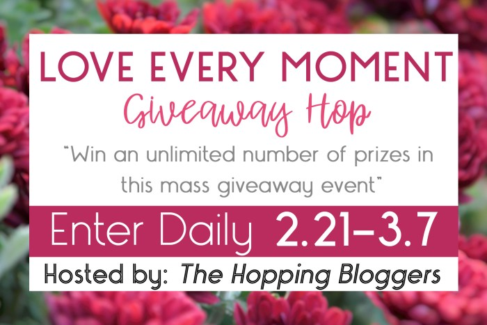 Loe Every Moment Giveaway Hop featuring Teach My Learning Kits at Mommy's Playbook