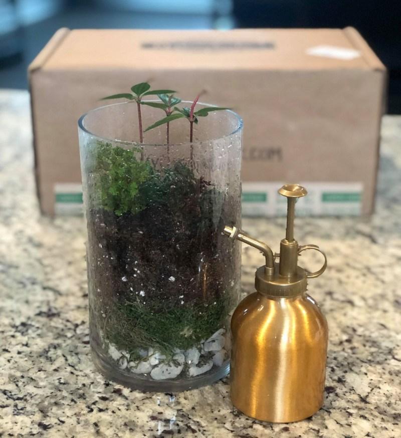 My Garden Box gardening project in a box!  #Gardening #accessories #GardenBling