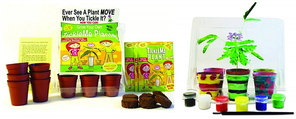 TickleMe Plant Deluxe Greenhouse Kit with 6 Color Paint Set for Kids #TickleMePlant