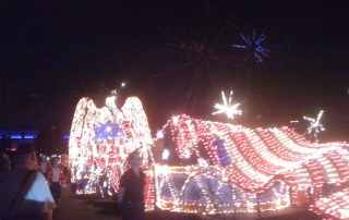 Disney Electric Parade