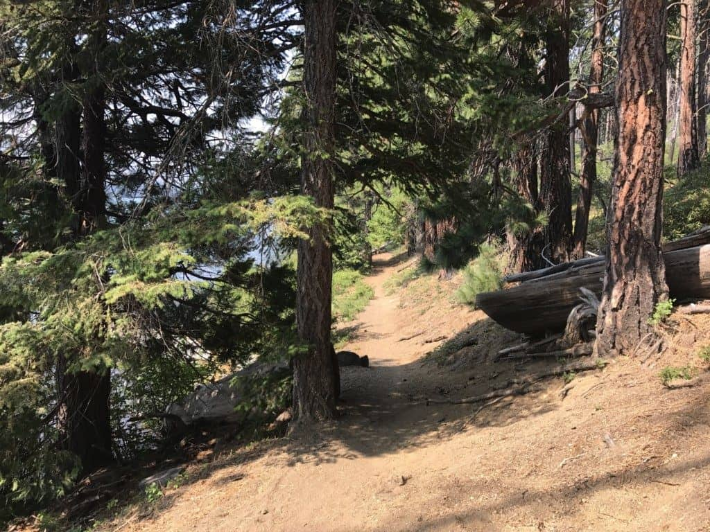 3 mile trail around Suttle Lake in Central Oregon