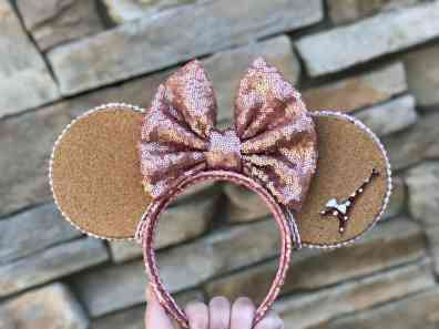 cork Mickey ears that can hold pins