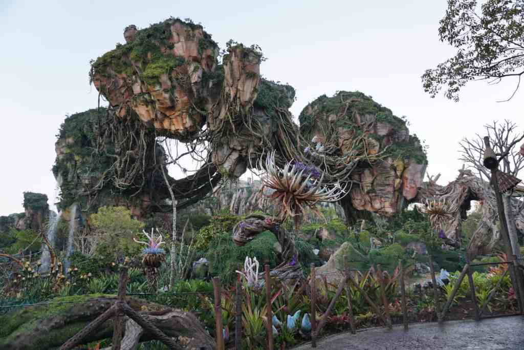Pandora the world of Avatar at the Animal Kingdom
