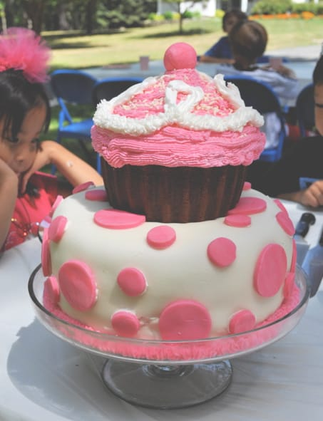 A Pinkalicious Birthday Party Momof6