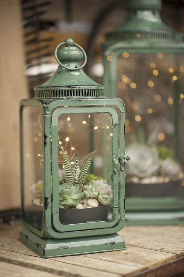 lantern succulent garden ideas