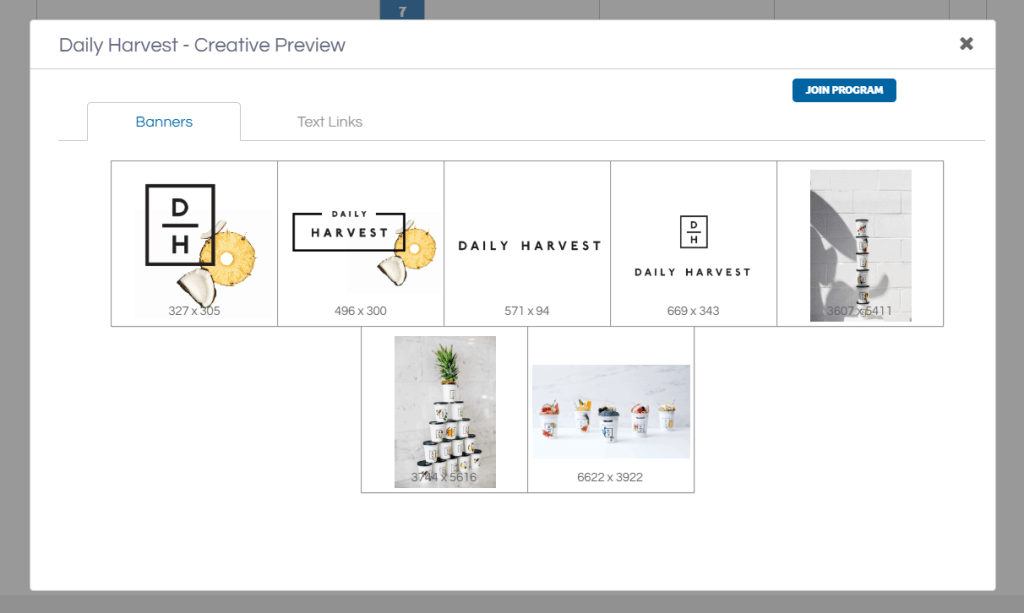 Creative Preview in Shareasale