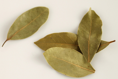 negativity-bay-leaves