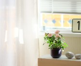 Mindful Setting of Your Home Office