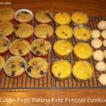 Going Gluten Free as a Family Trial and Freezer Cooking Gluten Free, Dairy Free Style