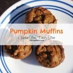 Pumpkin Spice Muffins Recipe – Gluten Free, Dairy Free