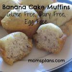 Banana Cake Muffins: Gluten Free, Dairy Free, Egg Free