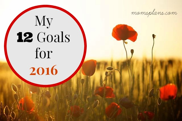 My 12 Goals for 2016