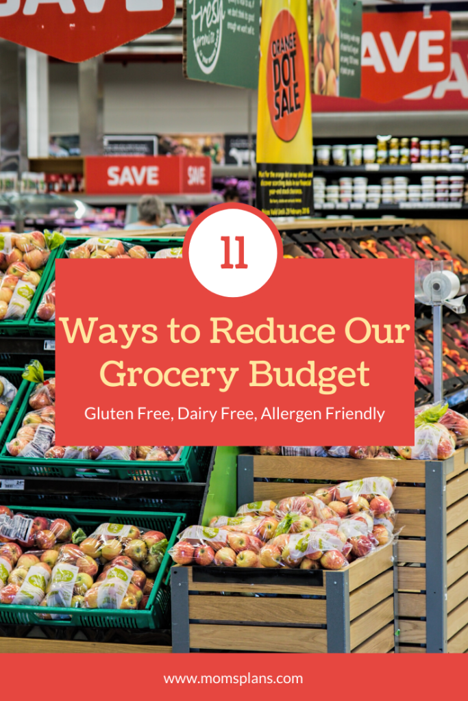 How We Plan to Reduce Our Grocery Budget