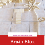 Brain Blox Wooden Building Planks Review