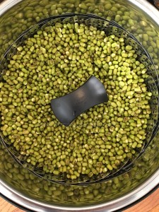 How to sprout beans - Instant Pot Method · Mom's Recipe Diary