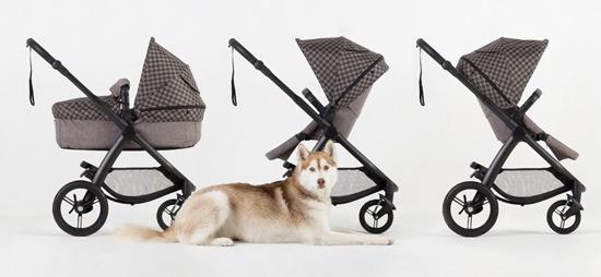 cosmopolitan-geo-stroller16
