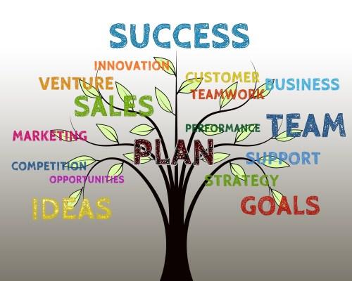 success, management