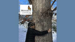 Heather hugging oak