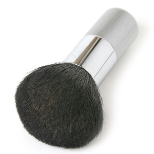 Ultimate Powder Brush Photo