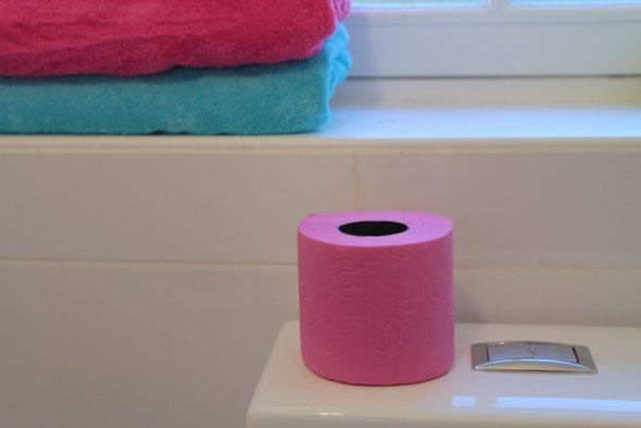renova-papier-toilette-fushia-turquoise