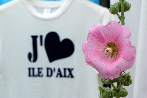 love-aix-island