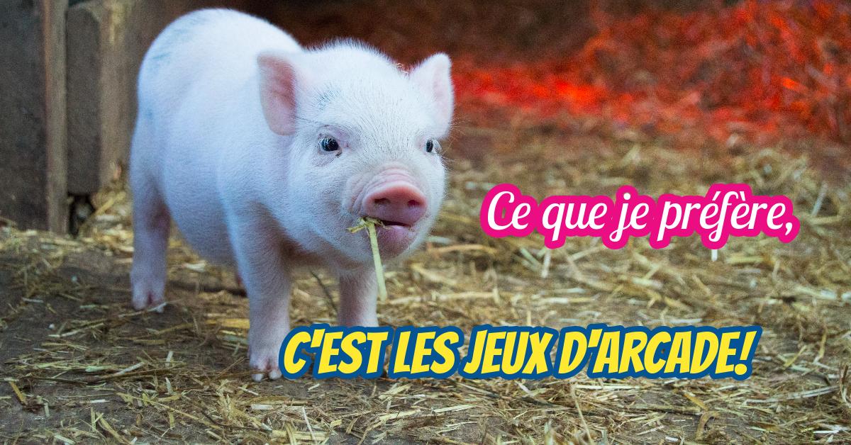 Cochons et jeux vidéos : 1 exemple surprenant