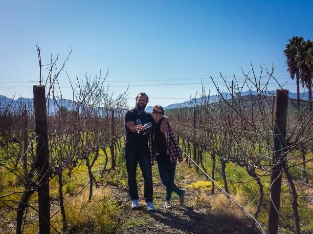 Visitando vinícolas durante viagem a África do Sul