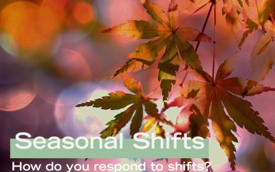 Seasonal Shifts: How Do You Respond to Shifts part 2