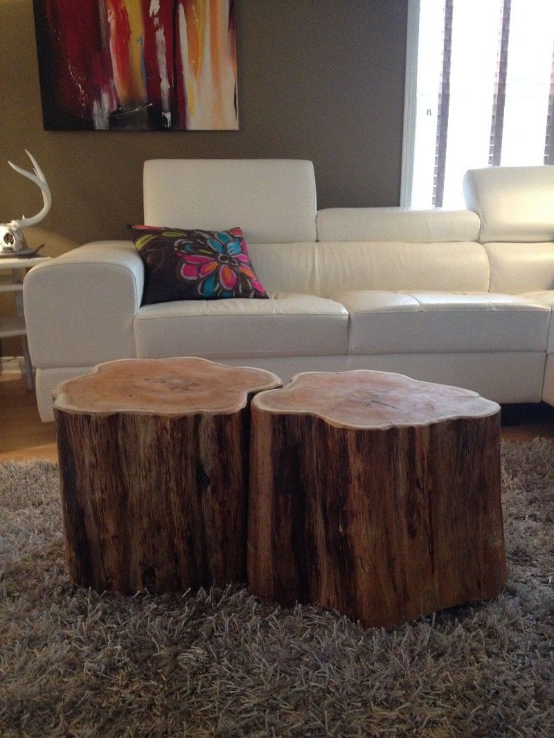meubles a base d arbre
