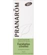 Eucalyptus citronné Bio Flacon compte gouttes Pranarôm