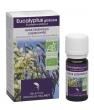 Huile essentielle Eucalyptus Globulus Dr Valnet