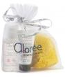 Kit city hydra Aloree Chlorocosmetic