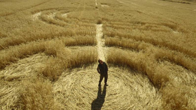 specsavers-crop-circles