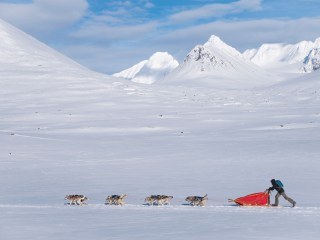 Det vita bandet – Hundeschlittenexpedition 2017