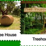 La casa sull'albero e la tenda eco-friendly