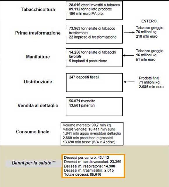 La-filiera-del-tabacco-in-Italia
