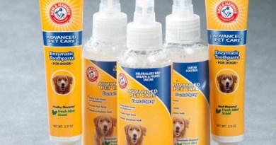 Cane, denti sani con dentifricio spray per cani