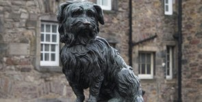 Cani famosi, Bobby Greyfriars