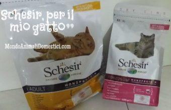 Crocchette Schesir, per il mio gatto