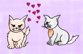 San Valentino per bambini: disegna i gatti innamorati