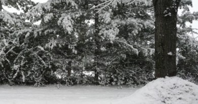 filastrocca dell'inverno