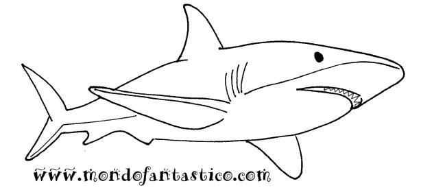stampa e colora lo squalo