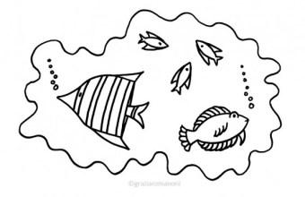 Pesci da colorare, d'acqua salata e dolce