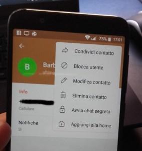 chat segreta telegram