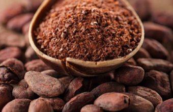 Cacao, i suoi benefici: utilizzato nello sport